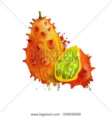Horned Melon Fruit Isolated On White Background. Kiwano Or Cucumis Metuliferus Tropical Blowfish Fru