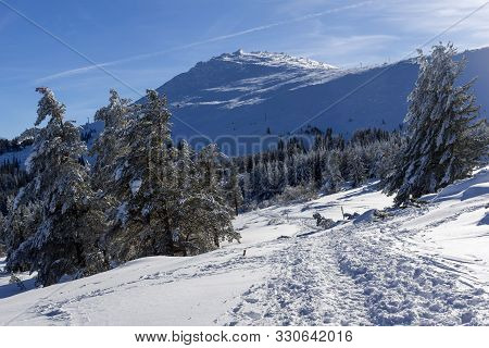 Winter View Of Vitosha Mountain With Hills Covered With Snow, Sofia City Region, Bulgaria
