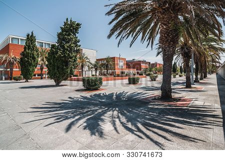 Modern Educational Or Office Buildings On Campus. University Student Dorm With Palms On The Alley. V