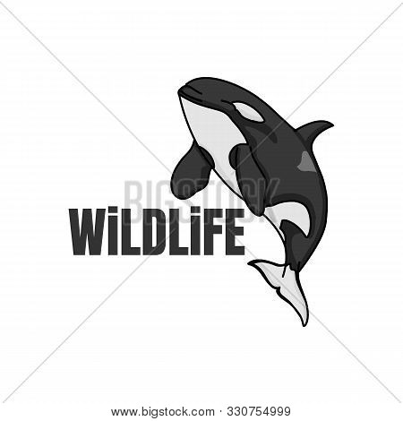 Orca Underwater Killer Whale Sign Logo Emblem Vector Illusration On White Background
