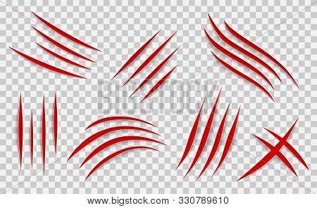 Claw Scratches Mark Set. Vector Scrape Track.