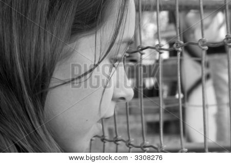 Young girl looking into a animal pen