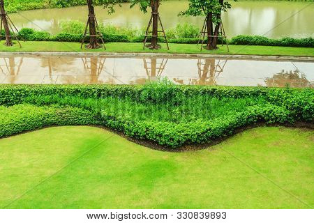 Green Lawn, Fresh Natural Scenery After The Rain Stops, The Green Lawn After The Rain Stops, The Gar