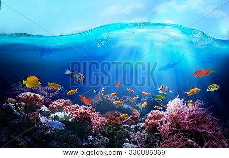 Rich colors of the coral reef. Underwater sea world. Colourful tropical fish. Ecosystem.