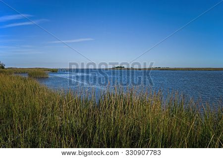 Saltmarsh Along The Delaware Coast In Usa In Late Afternoon Sun. Also Known As A Coastal Salt Marsh