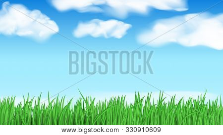 Abstract Nature Landscape Back With Green Grass