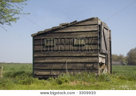 Old Barn Standing In The Polder