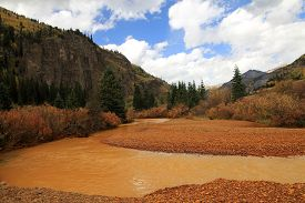 Fall Landscape Of Colorado With Yellow Animos River, Usa