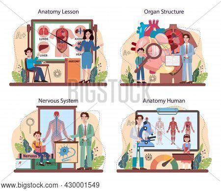 Anatomy School Subject Set. Internal Human Organ Studying. Anatomy