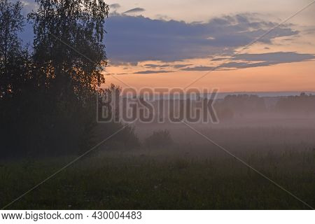 Forest Landscape In The Evening In The Fog Of The Evening Sun