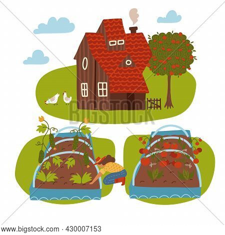 Farm Scene With Country House, Female Farmer, Summer Rural Landscape And Garden Bed. Gardening And F