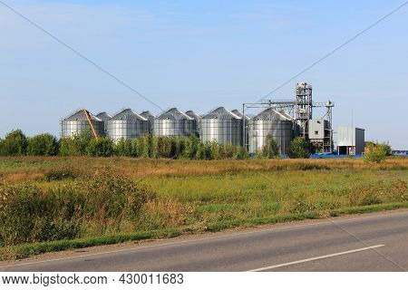 Modern Agricultural Grain Elevator With Blue Sky On The Background And Roan On Foreground. Storage O