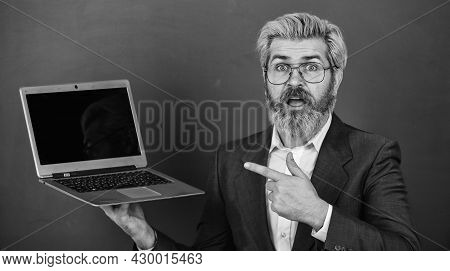 School Lifehack. Lot Of Information. Bearded Man Modern Laptop Surfing Internet. Interesting Informa