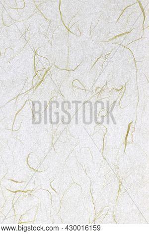 Plant Fibre Hairs Decorated Paper Background. Thin Silk Fibers Decorative Paper Texture. Portrait Ve