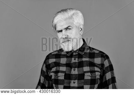 Fashion Trend. Bearded Man Checkered Shirt. Hipster Dyed Beard. Hairdresser And Barbershop. Coloring