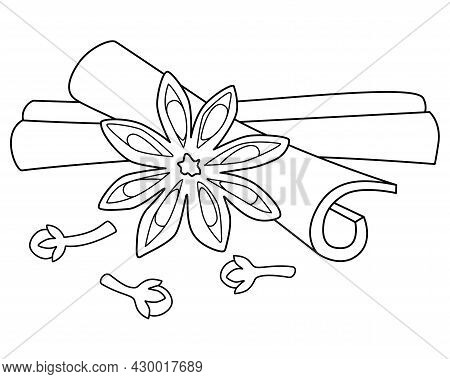 Star Anise, Cloves And Cinnamon Sticks - Spices Vector Linear Illustration For Coloring. Spices - Ci