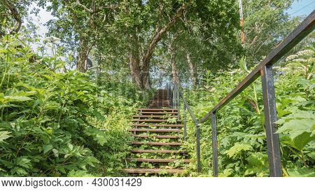 A Wooden Staircase With A Metal Railing Goes Up The Hill. There Is Lush Green Vegetation Around. Ahe