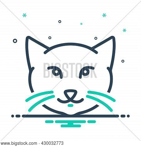 Mix Icon For Kitty-cat Cat Kitty Cute Kitten Animal Domestic Adorable Face Little