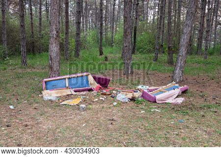 Garbage In The Forest. Environmental Pollution. Man And Nature.
