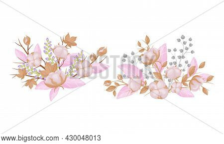 Cotton Plant Branches Set. Bouquets Of Beautiful Flowers Bolls In Opened Seeds Case Vector Illustrat