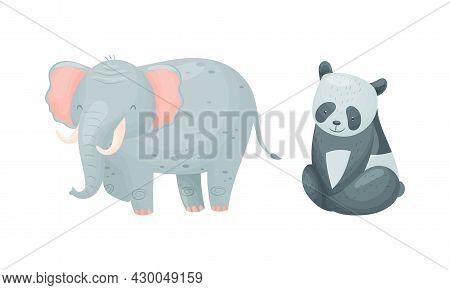 Cute Exotic Animals Set. Elephant And Panda Bear Cartoon Vector Illustration
