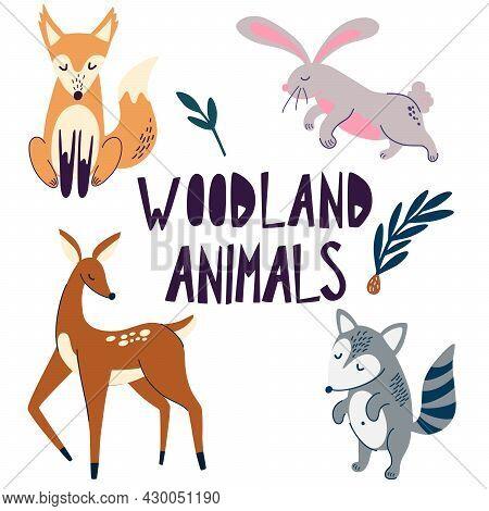 Woodland Animals. Funny Cliparts Collection. Forest Wildlife. Deer, Fox, Raccoon, Rabbit Cartoon Cha