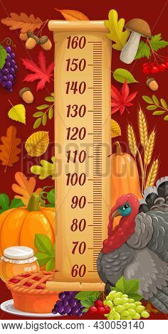 Kids Height Chart With Thanksgiving Turkey, Harvest And Autumn Leaves. Child Growth Vector Measure M
