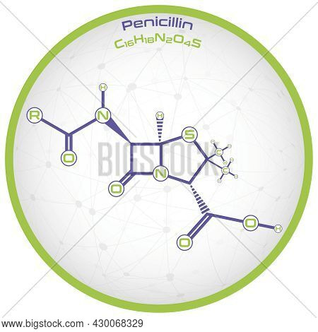 Large And Detailed Infographic Of The Molecule Of Penicillin