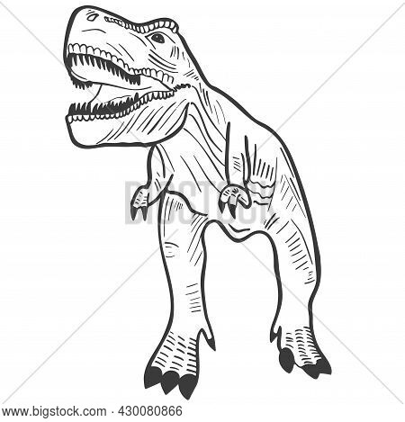 Hand Engraved Dinosaur Tirex Vector Illustration. Extinct Animal Of The Jurassic Period. Predatory D