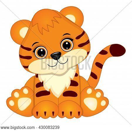Cute Baby Tiger Sitting. Vector Tiger. Baby Tiger Vector Illustration
