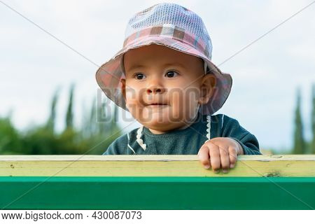 Portrait Of A Chubby Newborn Baby In A Panama Hat Looking Out From Behind A Park Bench