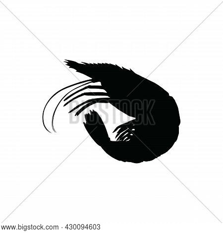 Shrimp Icon Isolated On White Background From Seafood Collection. Shrimp Icon Thin Line Outline Line