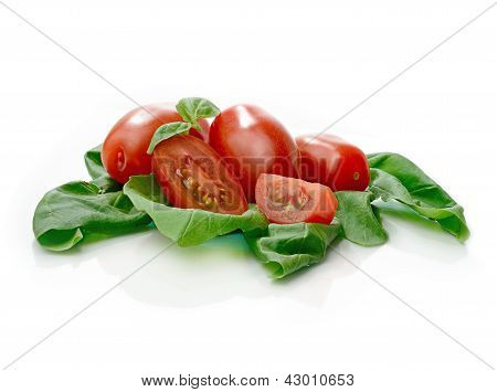 Tomato And Basil Leaves