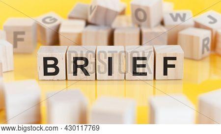Word Brief Written On Wood Blocks, Concept