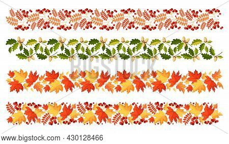 Leaves. Autumn Leaf Border Set. Horizontal Divider Made Of Maple Leaves, Rowan With Berries, Oak Wit
