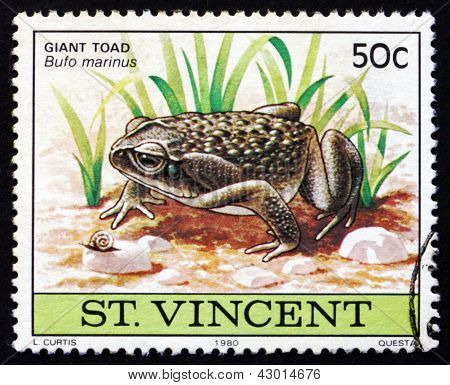Briefmarke Nicaragua 1980 riesige Kröte, Tier