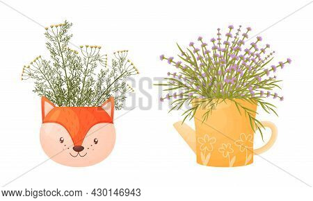 Garden Potted Herbs In Pots Of Different Shapes Set. Ceramic Flower Pots In Shape Of Fox And Kettle