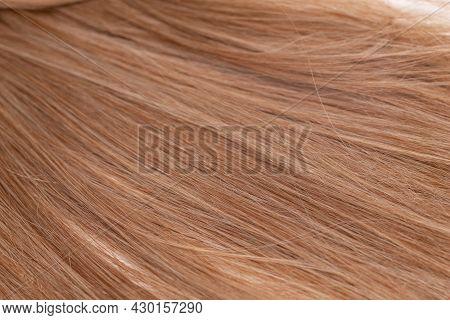 Blonde Hair Background. Female Blonde Hair Texture.