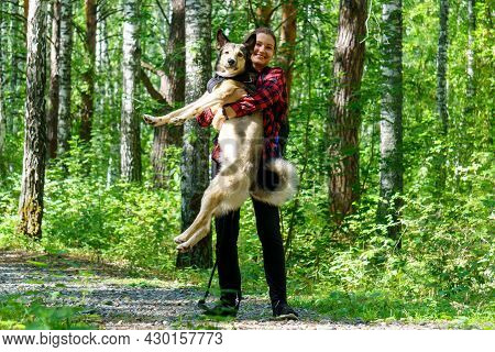 Girl Hugs Dog And Plays With Her, In The Forest On A Bright Sunny Day. Petrenthood
