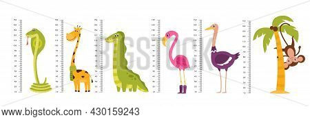 Growth Ruler. Kids Scale Measuring With Funny Tall Or Long Wild Animals And Birds. Cute Giraffe And
