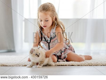Little child girl playing doctor with ragdoll kitten indoors. Pretty female kid hearing heart of feline domestic kitty pet at home