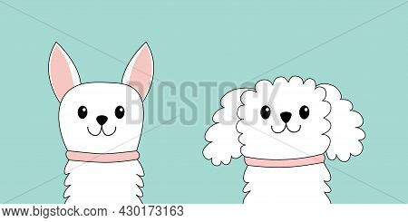 Maltese Poodle Chihuahua Toy Terrier Dog Puppy Face Head Set. White Lapdog. Animal Icon. Cute Kawaii