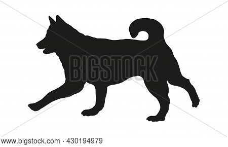 Black Dog Silhouette. Running Siberian Husky. Pet Animals. Isolated On A White Background. Vector Il