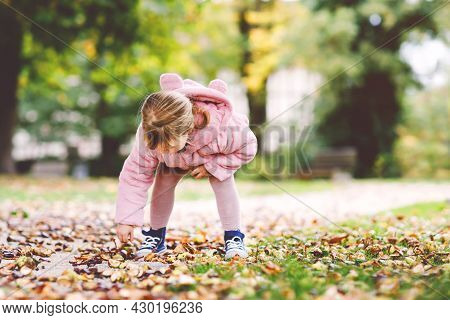 Adorable Cute Toddler Girl Picking Chestnuts In A Park On Autumn Day. Happy Child Having Fun With Se