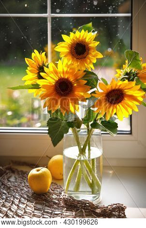 Bouquet sunflowers in glass vase at windowsill window. Still life of summer yellow flowers with apple and handbag. Sunny warm day.