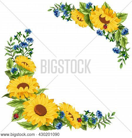 Sunflowers And Cornflowers In Illustration.colored Vector Illustration With Sunflowers And Cornflowe