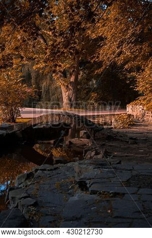 Majestic Autumn Park Vertical Photography Of Picturesque Nature Scenic View With Stone Paved Landsca