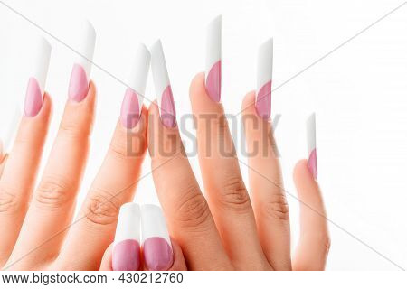 Well-groomed Female Hands With Elegant French Manicure On A White Background. Long Nails. Beauty Sal