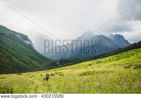 Dramatic Vivid Mountain Landscape With Green Forest Under Pointed Peak Among Rainy Low Clouds. Sceni