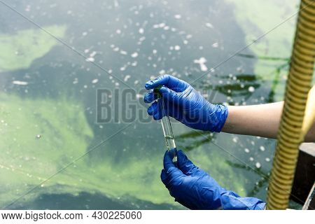 A Gloved Hand Takes Water Into A Test Tube From A City Reservoir. Urban Waste Water. Sampling From O